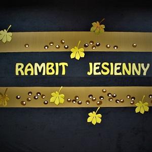 Międzyszkolny Turniej Rambit Jesienny
